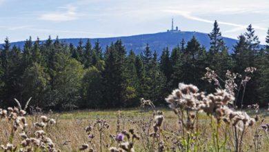 Wanderwege im Harz - Der Goetheweg zum Brocken